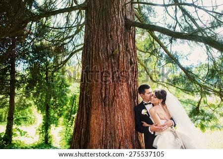 wedding love - stock photo