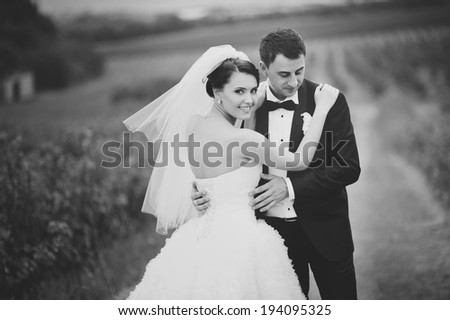 Wedding portrait of a young couple, groom and bride posing - stock photo