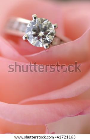 wedding ring on rose - stock photo