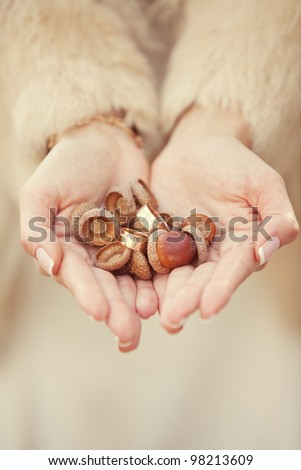 wedding rings and acorns in the hands of the bride - stock photo