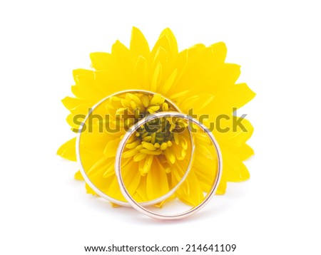 wedding rings and flowers aster on a white background - stock photo