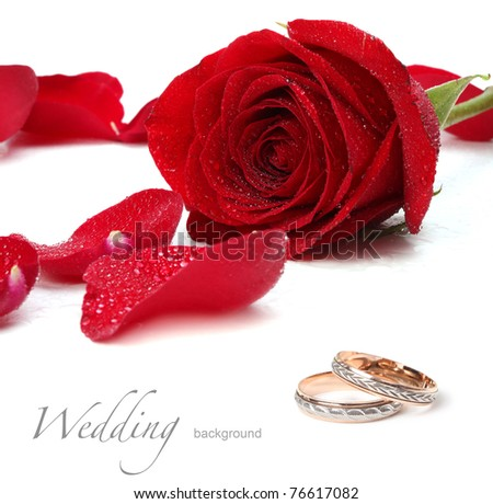 wedding rings and red roses - stock photo