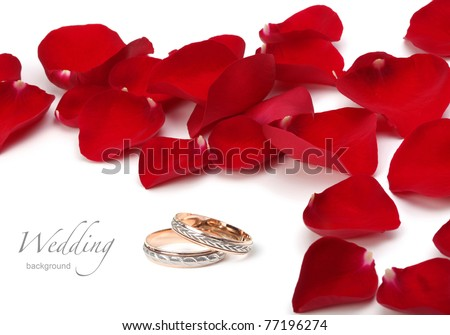 wedding rings and roses petals - stock photo