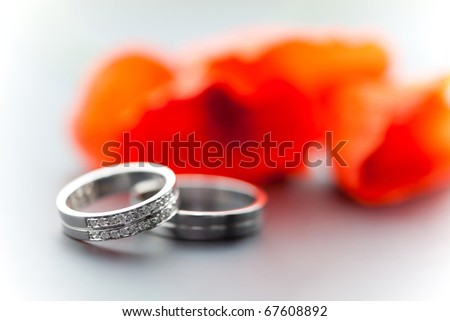 Wedding rings and tullips - stock photo