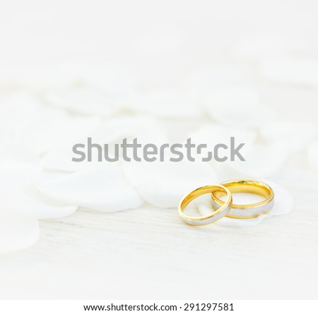 Wedding rings and white petals/Wedding rings/Wedding rings - stock photo
