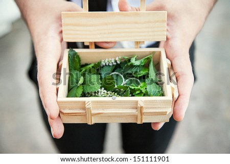 wedding rings in a box eco - stock photo
