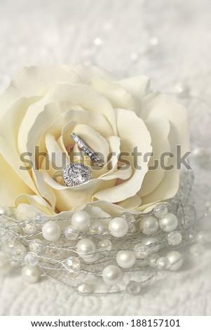 Wedding rings in cream rose flower - stock photo