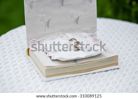 Wedding rings in the book as a pillow for rings, wedding stylized, summer
