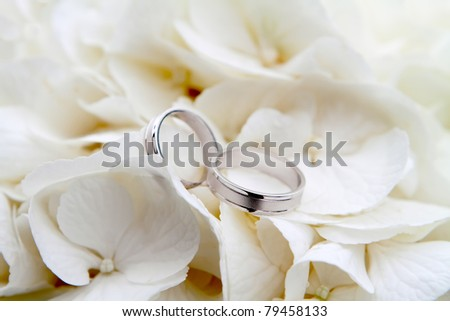 Wedding rings on a bouquet of white flowers - stock photo