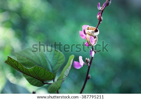 Wedding rings on a branch with flowers and leaves on a green background. Beautiful wedding romantic background. - stock photo