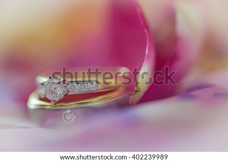 Wedding rings on a flower - stock photo