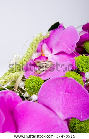 Wedding rings on a petal of a violet orchid rose - studio photo - stock photo
