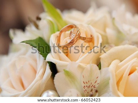 Wedding rings on a rose - stock photo
