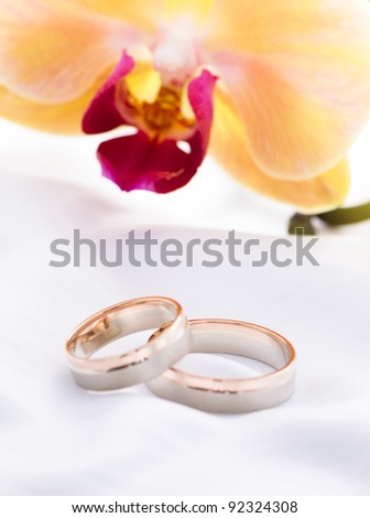 Wedding rings on a white background with flower
