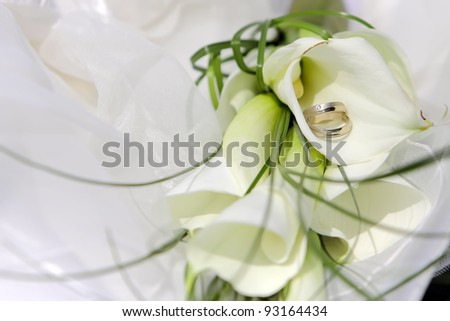Wedding rings on a white calla lilly flowers, focused to the rings - stock photo