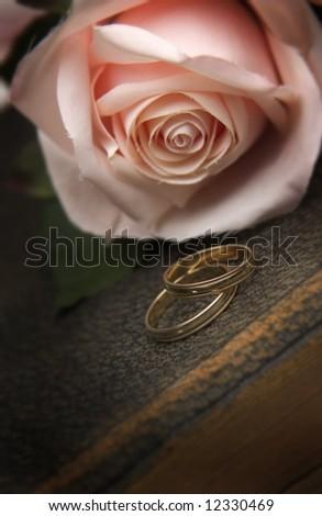 Wedding rings on Bible - stock photo