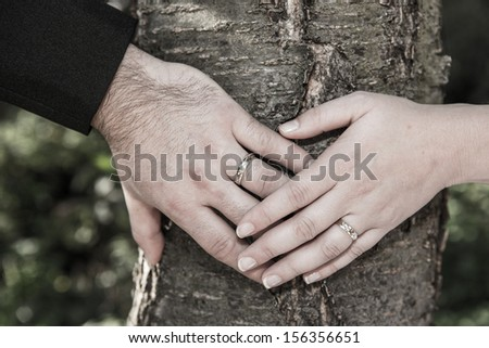 wedding rings on the hands of the newlyweds - stock photo