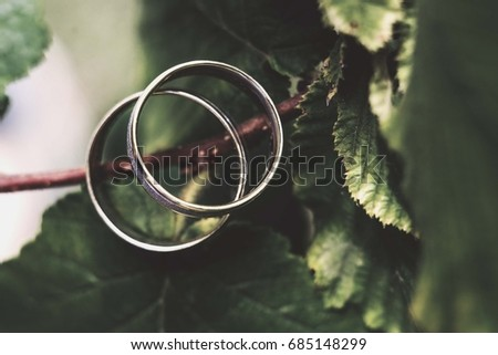 wedding rings standing on tree leaves from above perspective