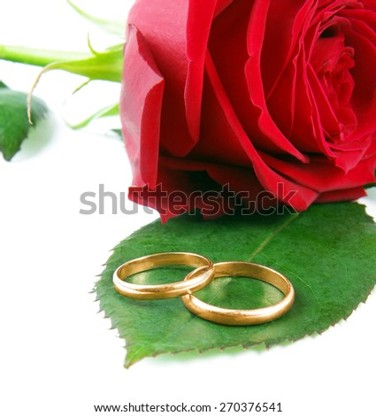 wedding rings with rose - stock photo