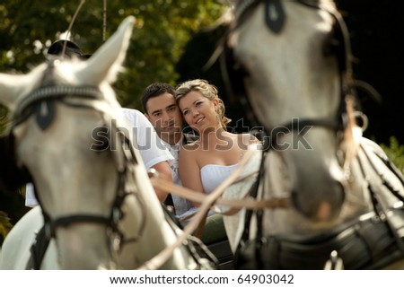 wedding series, carriage - stock photo