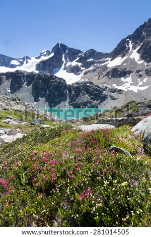Wedgemount Lake and its saturated turquoise waters, Wedge Mountain and Alpine flowers, Whistler, BC.  Vertical Image.  - stock photo