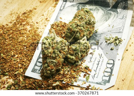 weed and money, marijuana bud and hundred dollar bill  - stock photo