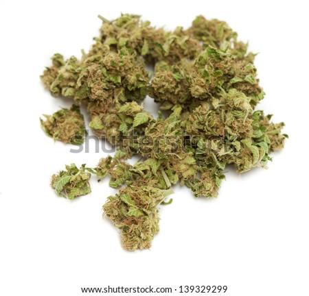 weed isolated on white background - stock photo