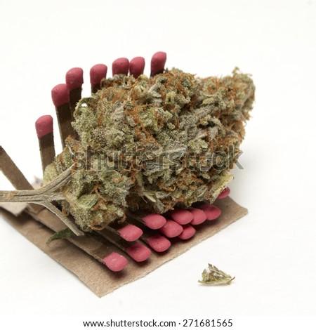 Weed Marijuana and Cannabis on a White Background  - stock photo