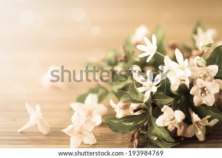 Weigel beautiful flowers on wooden table. filter effect antique - stock photo