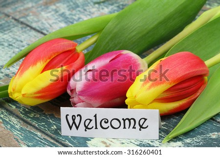 Welcome card with colorful tulips on rustic surface