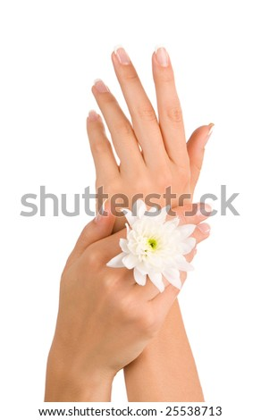 Well-groomed beautiful female hands - stock photo