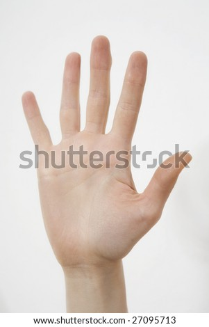 well shaped women hand