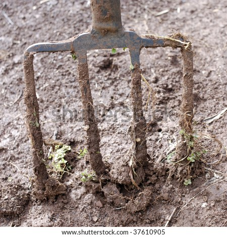 Well used muddy garden fork in wet soil. - stock photo