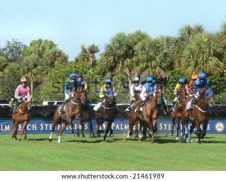 WELLINGTON, FL - NOV 29: Competitors take part in the Palm Beach Steeplechase on November 29, 2008 in Wellington, FL. Xavier Aizpuru #7 on Seeking No More won the race.