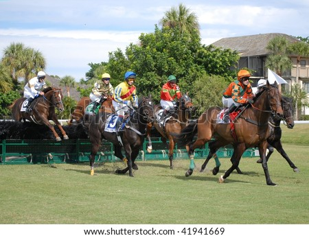 WELLINGTON, FL - NOVEMBER 28: a tight field competing in the Maiden Hurdle Race at the Suncast Palm Beach Steeplechase November 28, 2009 in Wellington, FL