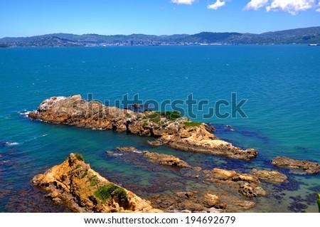 Wellington Harbour - stock photo