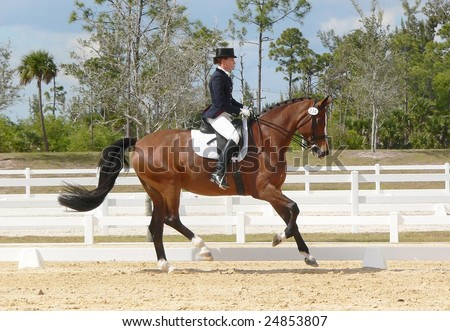 WEST PALM BEACH, FLORIDA - FEBRUARY 6: Lynda Alicki and Lorelei compete in the Wellington Classic Dressage Spring Challenge on February 6, 2009 in West Palm Beach.