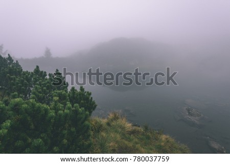 western carpathian mountain tops in  autumn covered in mist or clouds. panoramic view from a distance. mountain lake panorama - vintage film look