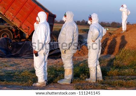 WESTERN NEGEV, ISRAEL - MARCH 18: Agriculture Ministry are burying the carcasses of dead turkeys due to Bird Flu outbreak at Kibbutz En Hashlosha in the western Negev, Israel on March 18, 2006. - stock photo