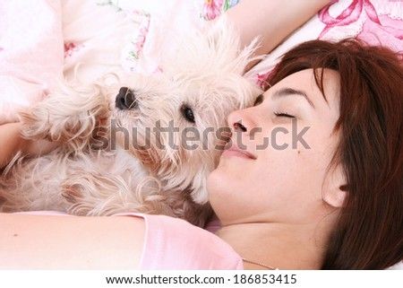 Westie sleeping next to woman in bed . - stock photo