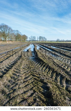Wet Belgian farmland with tire tracks in the foreground and the edge of a small village in the background on a sunny day in the end of the winter season. - stock photo