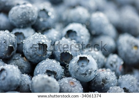 Wet blueberries background