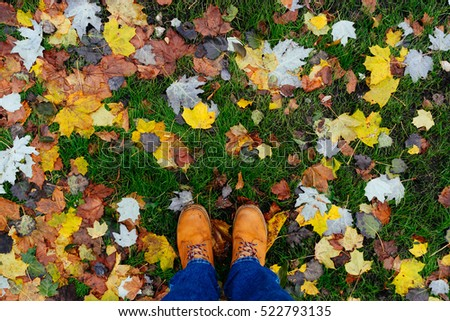 wet fallen leaves pattern