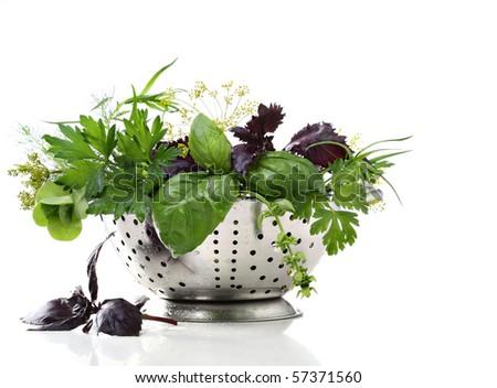Wet herbs in colander - stock photo