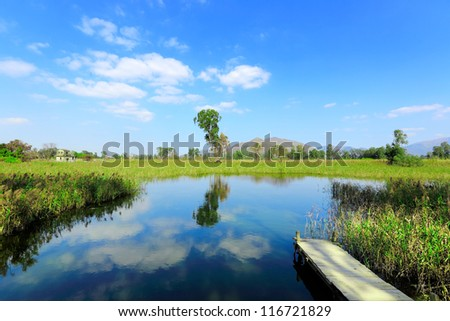 wet land with pier - stock photo