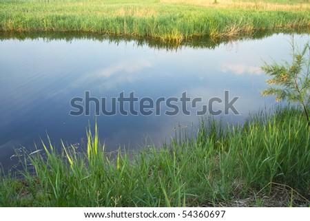 Wet marsh - stock photo