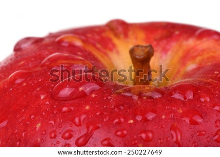 Wet red apple isolated on white. Macro drops on apple - stock photo