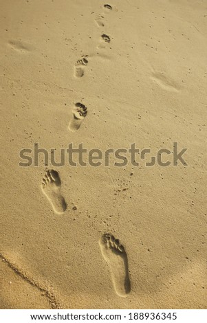 Wet sand at the beach and the water foam. Background