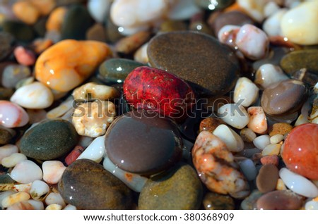 Wet sea pebbles on the seashore - stock photo