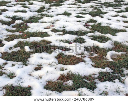 Wet snow partly cover green lawn grass - stock photo